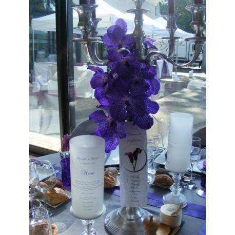 orchidee vanda artificielle
